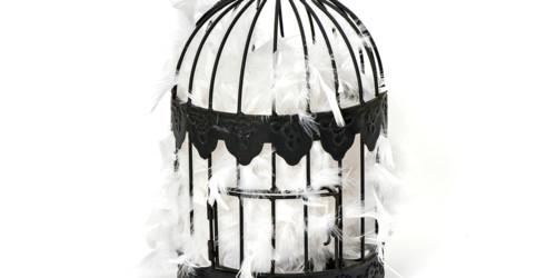 Le gabbie